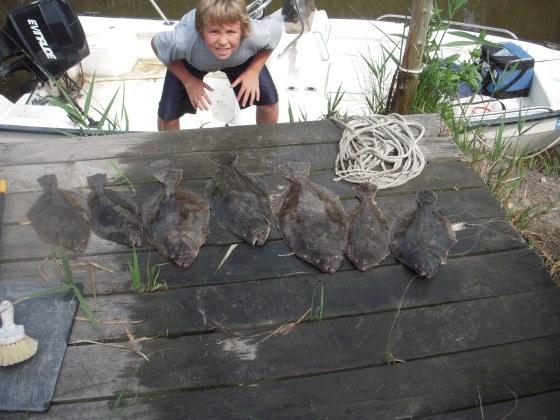 flounder 056