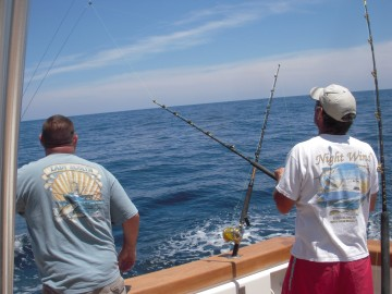 Bob and Spence watch a white marlin swim
