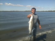 September 2013 Keeper back bay striper