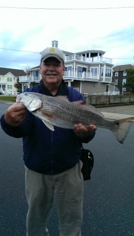 Red drum caught by a locale fishing legend