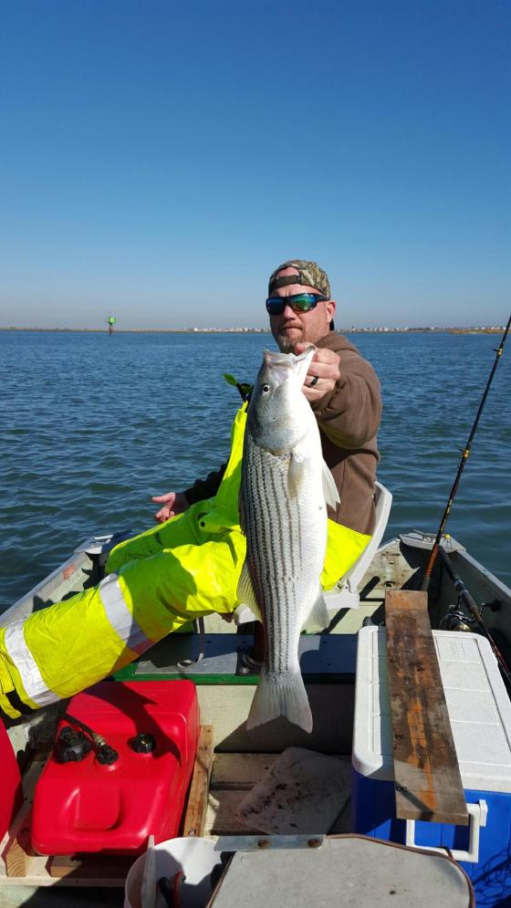 Chip Gruff and a hard fighting back bay striper.