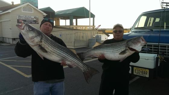 Mark and CJ with a couple of  big Cape May County holiday striped bass.