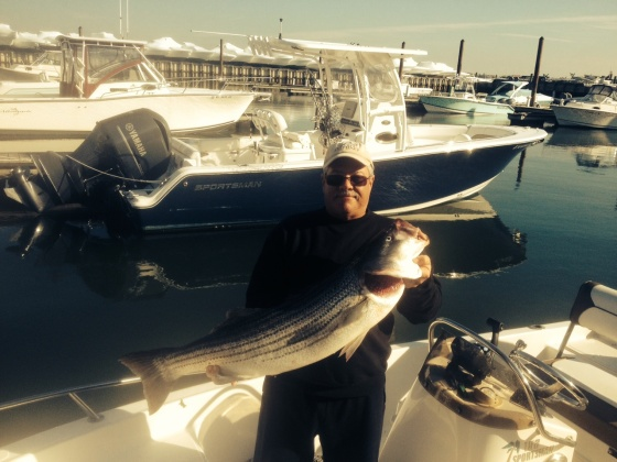 """Cj Polhamus  kept one 41"""" December striped bass for the table. He released  numerous others in the same size range."""